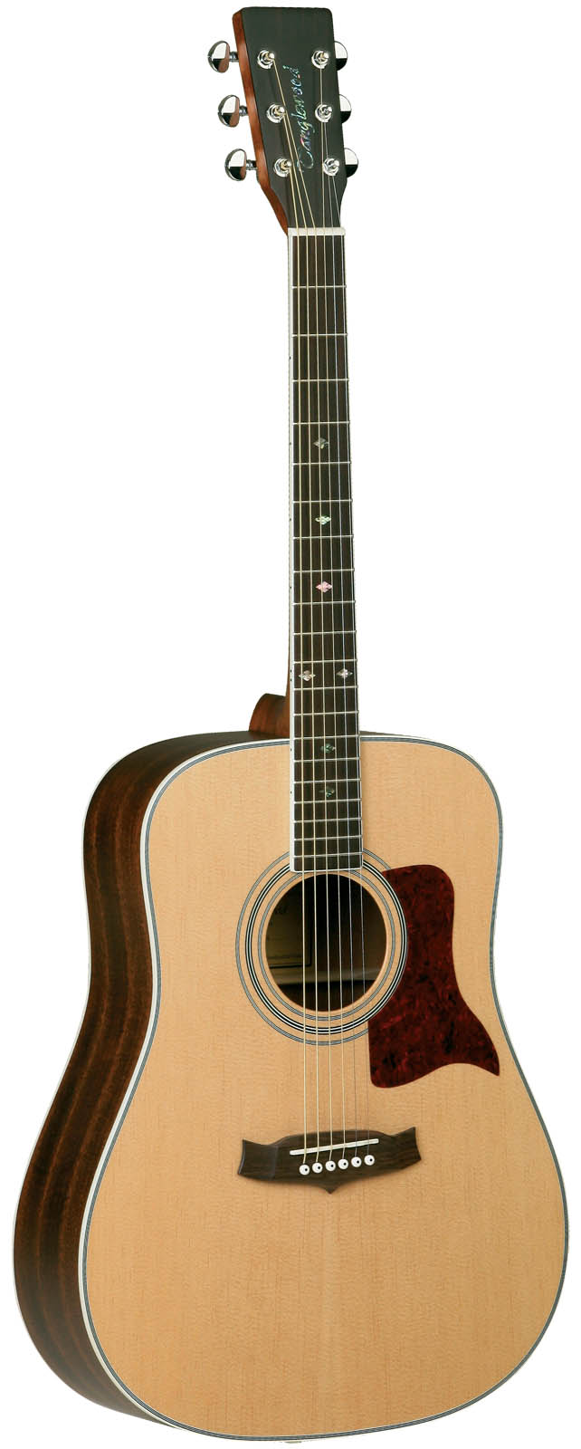tanglewood tw15 ns dreadnought guitar discount music center orlando. Black Bedroom Furniture Sets. Home Design Ideas